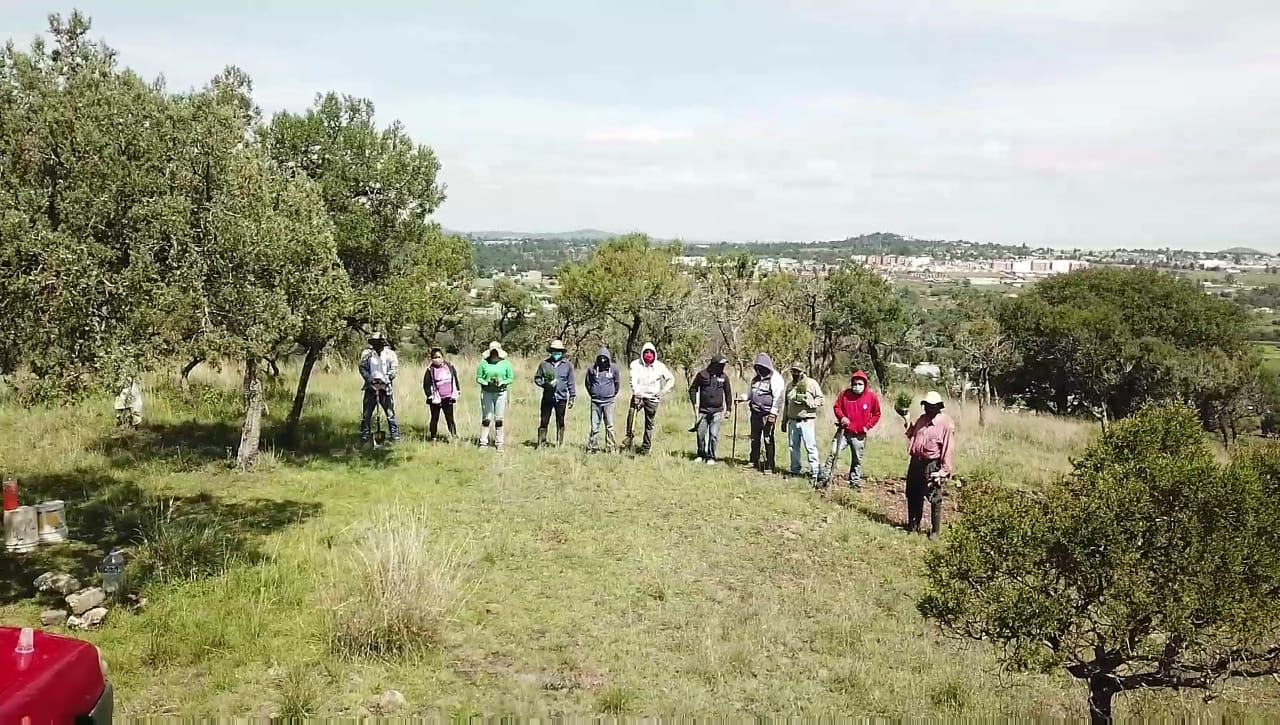 En Tzompantepec se llevó a cabo el sembradío de 2500 Sabinos