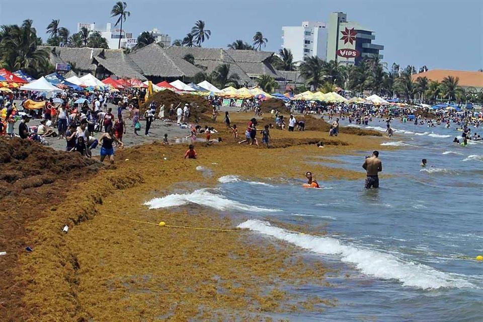¡Ojo! Reportan bacterias fecales en 5 playas turísticas de Acapulco