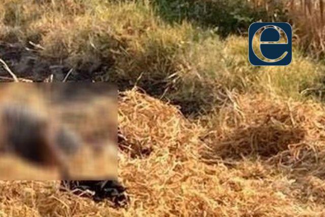 Localizan el cadáver de un hombre en una barranca de Chiautempan
