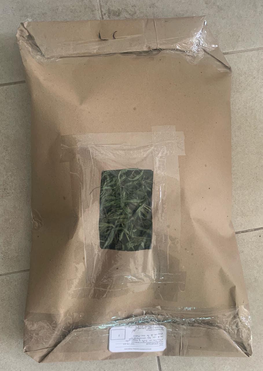 Policía Estatal asegura marihuana en Panotla