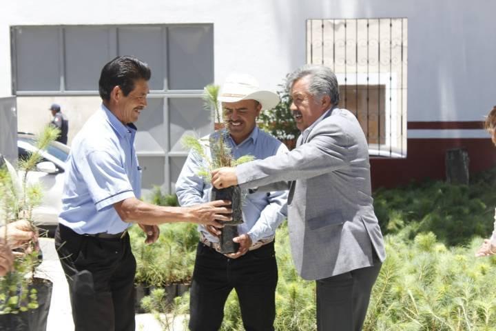 El programa Reforestando a Ixtacuixtla mejora el entorno ecológico: alcalde