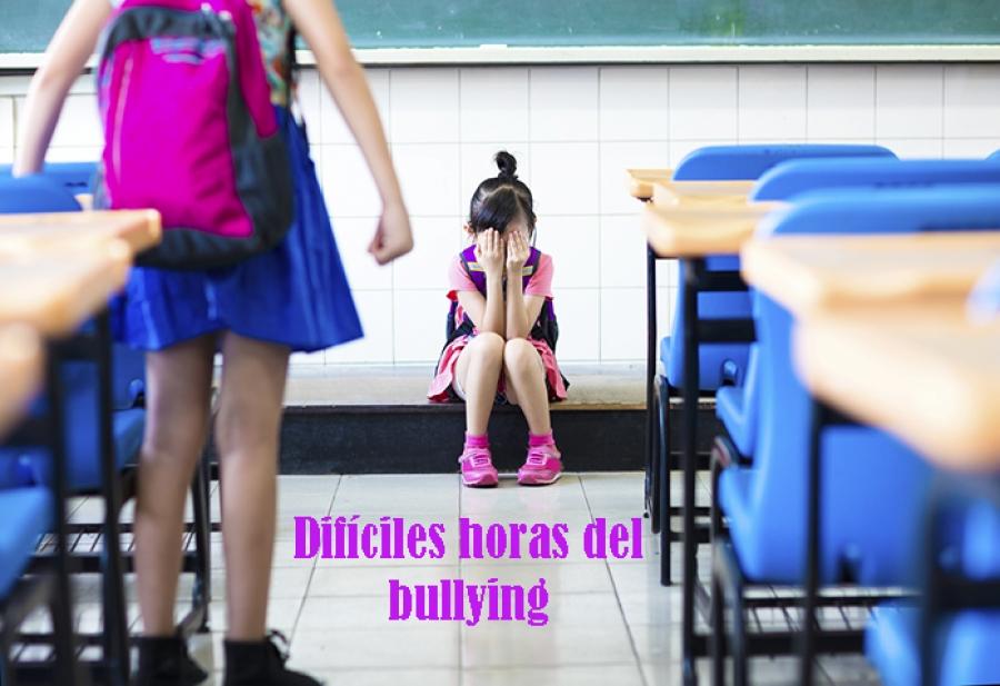 Bullying afecta a todos los mexicanos