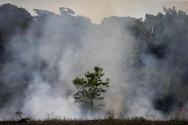 Imponen multas millonarias a Brasil por los incendios en la Amazonía