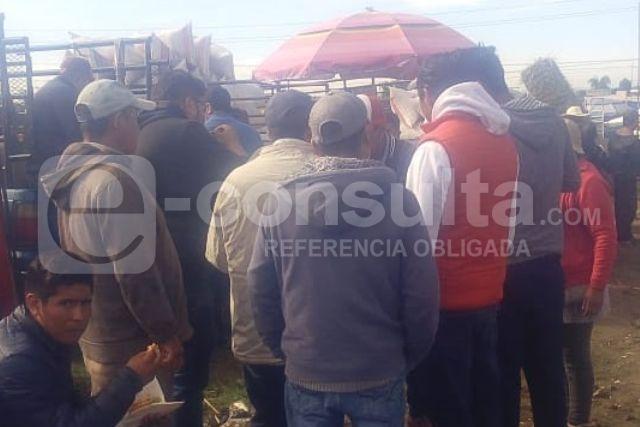 Sin medidas preventivas reabren tianguis de ganado en Tepetitla, denuncian
