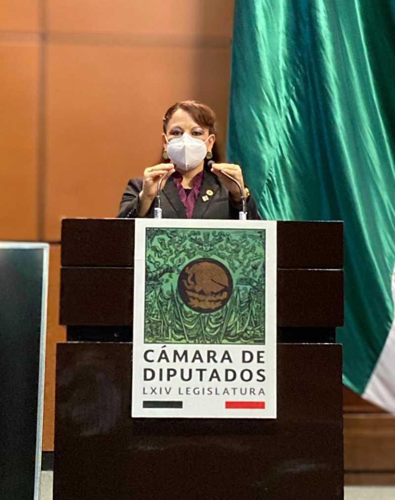 Presentan iniciativa para crear Ley de Fomento Apícola y Protección de Agentes Polinizadores