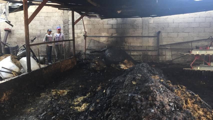 Protección Civil activa protocolo de seguridad en un incendio en un domicilio