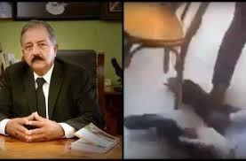 ¡Fake News! Graban a gato atacando al alcalde de Culiacan