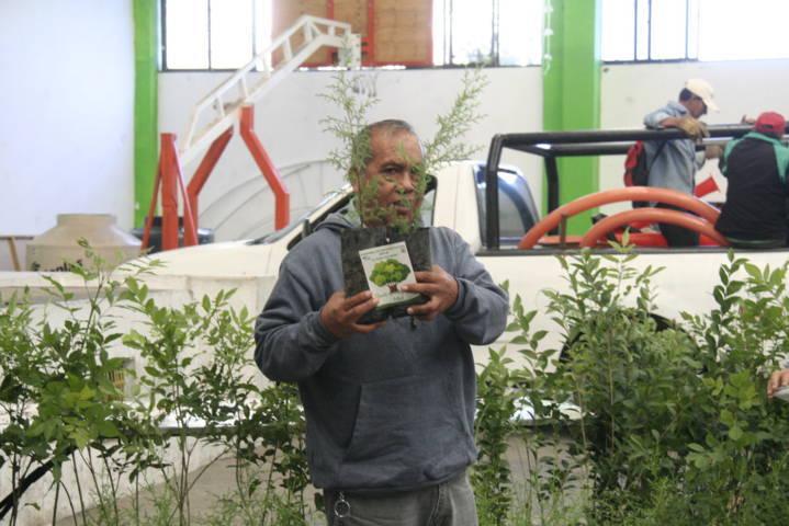 Ayuntamiento conmemora el Día Mundial del Árbol