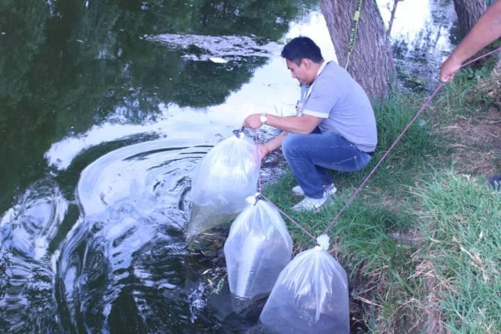 Ayuntamiento fomenta la pesca y la sana convivencia en La Presa