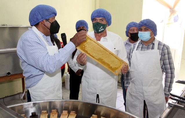 Sefoa atiende a más de 100 apicultores con acompañamiento técnico