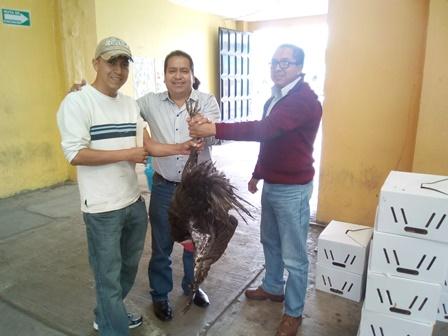 Alcalde mejora alimentación de 20 familias de Amaxac