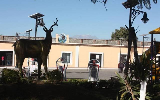 Van cuatro presidentes municipales infectados de Covid 19 en Tlaxcala