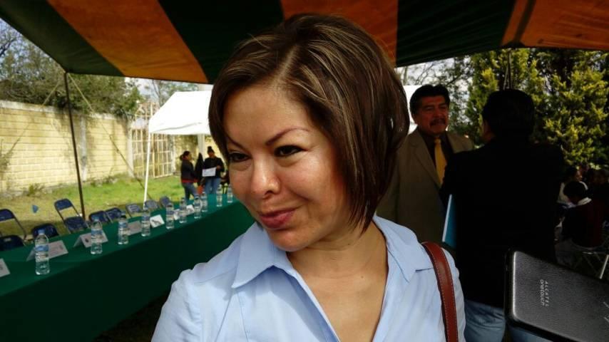 Minerva Hernández recibirá constancia de mayoría como senadora