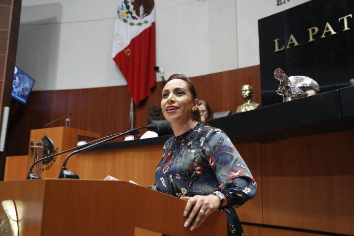 Votó Senadora Adriana Dávila en contra de la ley de Seguridad Interior