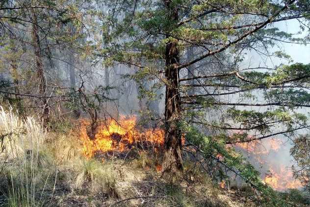 Exhortan en Ixtacuixtla a evitar quemas agrícolas para evitar daños