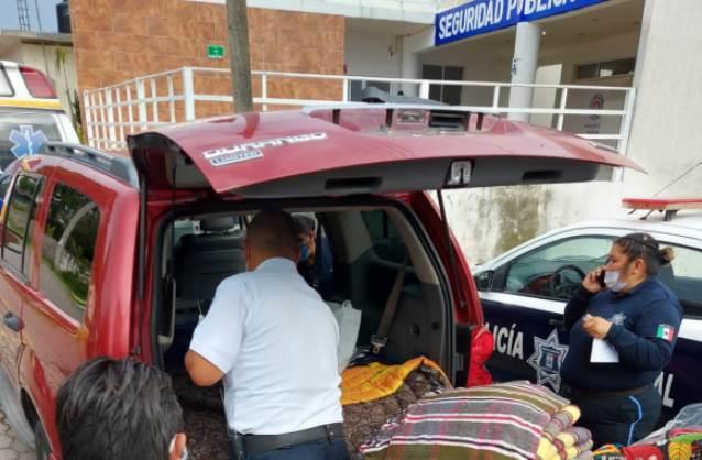 Cazan mapaches de Anabell y Angelo Gutiérrez en Apetatitlán