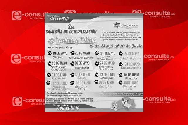 En Chiautempan se realiza segunda campaña de esterilización de perros y gatos