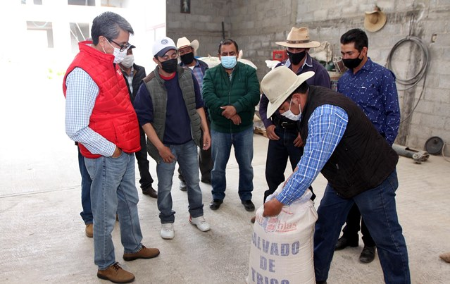 Supervisa Sefoa proyecto territorial de bovinos de leche