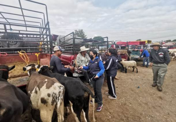 Continúa la entrega de cubrebocas en mercado de animales en Zacatelco