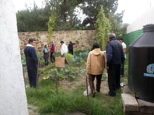 Invita IMM de Tlaxcala a curso de agricultura urbana