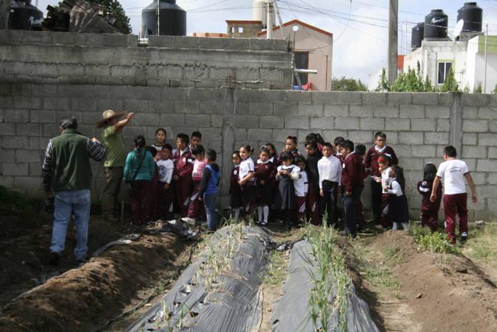Ayuntamiento fomenta los huertos escolares para mejorar los alimentos
