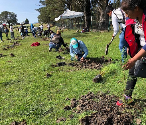 """Con """"Yo soy Apizaco"""" plantan 200 árboles en la Laguna de Apizaquito"""
