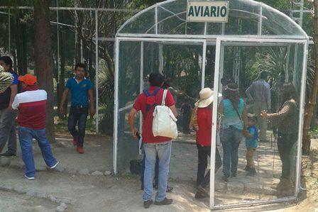Invitan a visitar el aviario del Zoológico del Altiplano