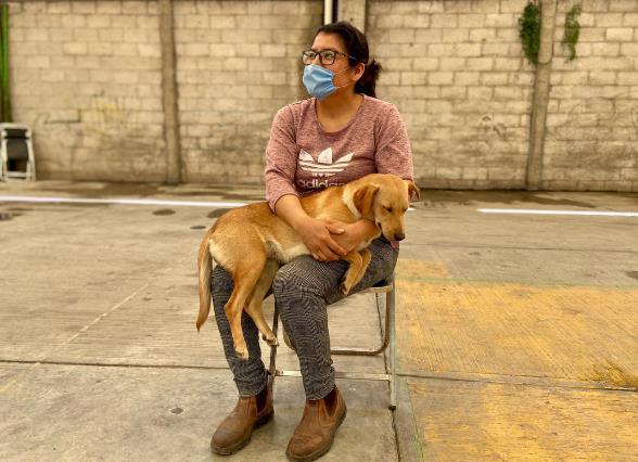 Realiza Xicohtzinco campaña de esterilización para mascotas