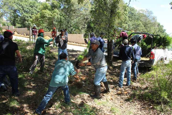 En la nueva carretera Apizaco-Tlaxcala sembraremos 10 mil árboles: alcalde