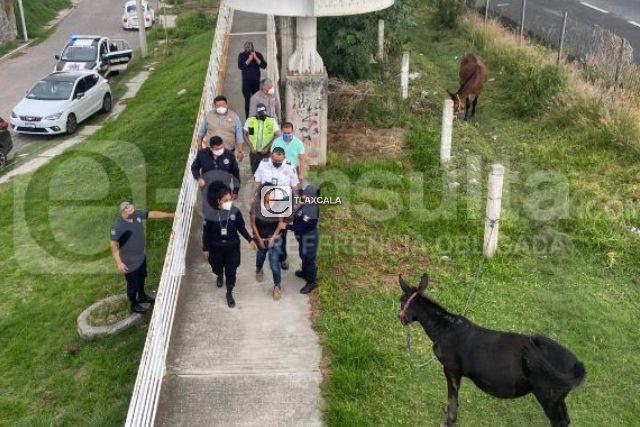 Salvan a fémina que intentó suicidarse en puente de Totolac