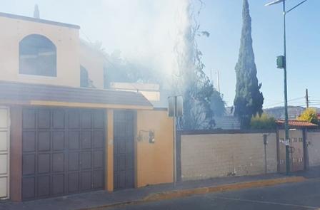 Sofocan incendió de árbol en la Loma Xicohténcatl