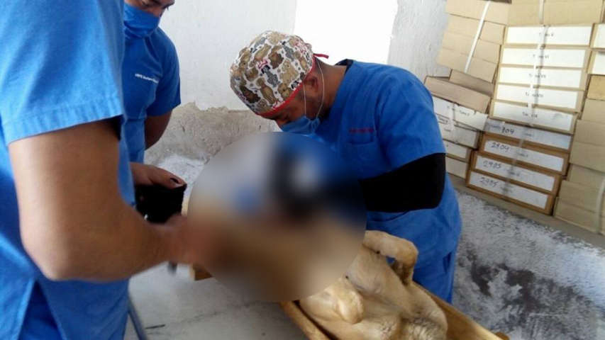 Arranca campaña de esterilización en Apizaquito