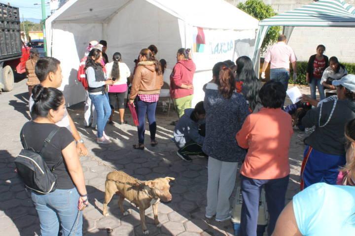 Llevarán Campaña de Esterilización canina y felina a Tizatlán