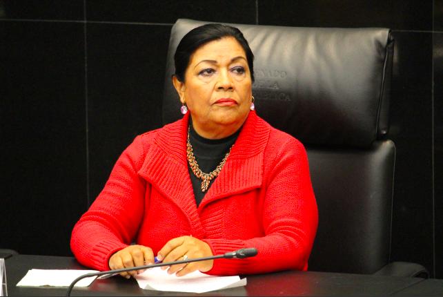 """""""A las instituciones nos está rebasando la impunidad y la violencia"""": Martha Palafox"""