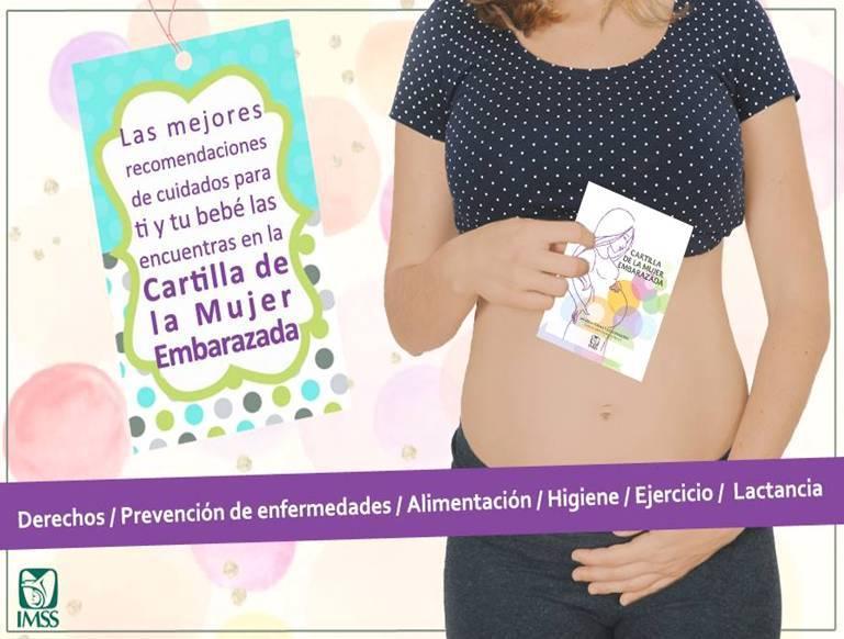 Con consulta preconcepcional y cartilla de la mujer embarazada, se reducen riesgos