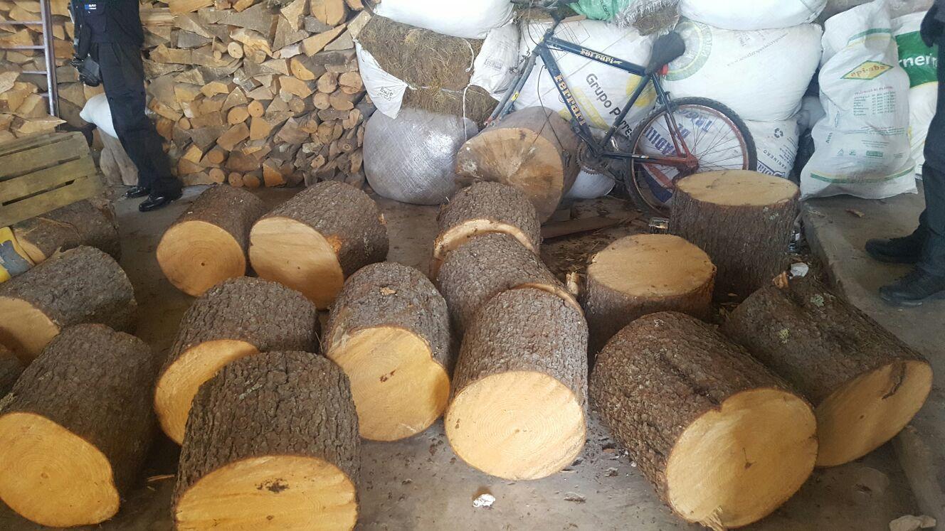 PGR Tlaxcala decomisa madera en San Francisco Tetlanohcan