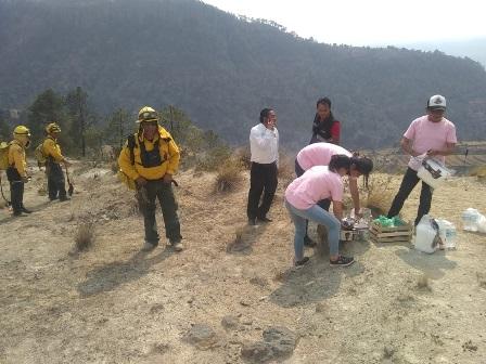 Protección Civil atiende incendio en Emiliano Zapata