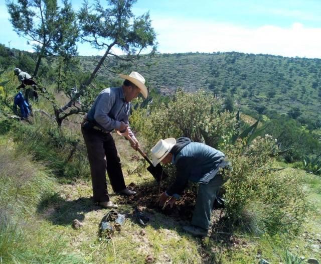 Concluye CGE Programa de Recuperación de Ecosistemas 2018