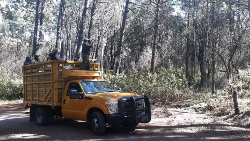 Refuerza CGE estrategia contra incendios en el Parque Nacional La Malinche