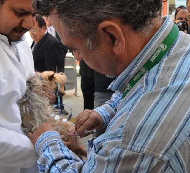 Módulo canino  brindará en Febrero servicios gratuitos en Tlaxcala
