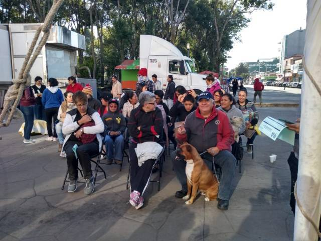 Apizaquenses responsables con sus mascotas, responden a campaña de esterilización