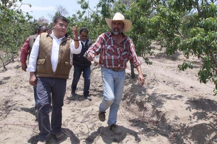 Fortalecer el acercamiento de durazneros y productores prioridad para el Gobierno del Estado: Ramírez Conde