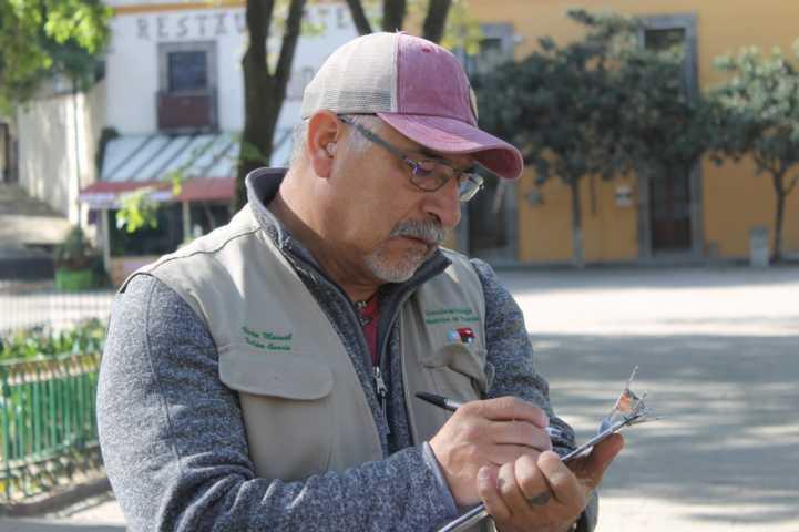 Sustituirán en Plaza Xicohténcatl árboles que representan riesgos de caerse