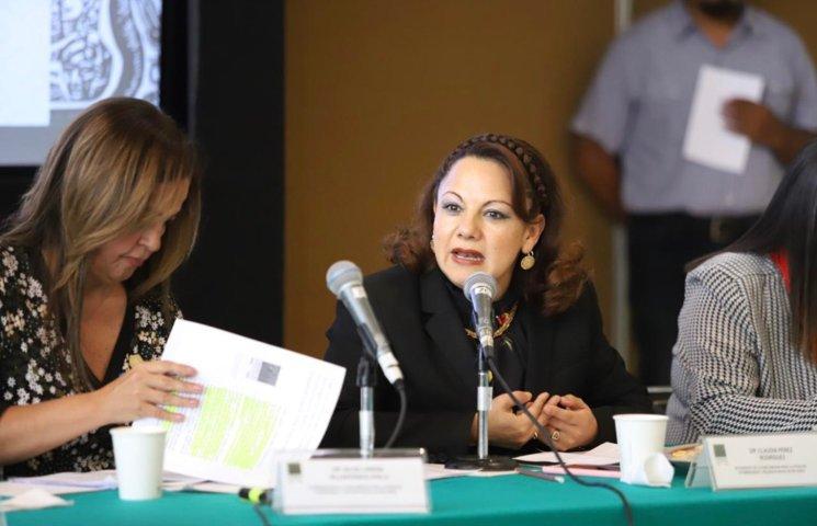 Insta Diputada Federal, Claudia Pérez a luchar unidos contra la violencia hacia la mujer