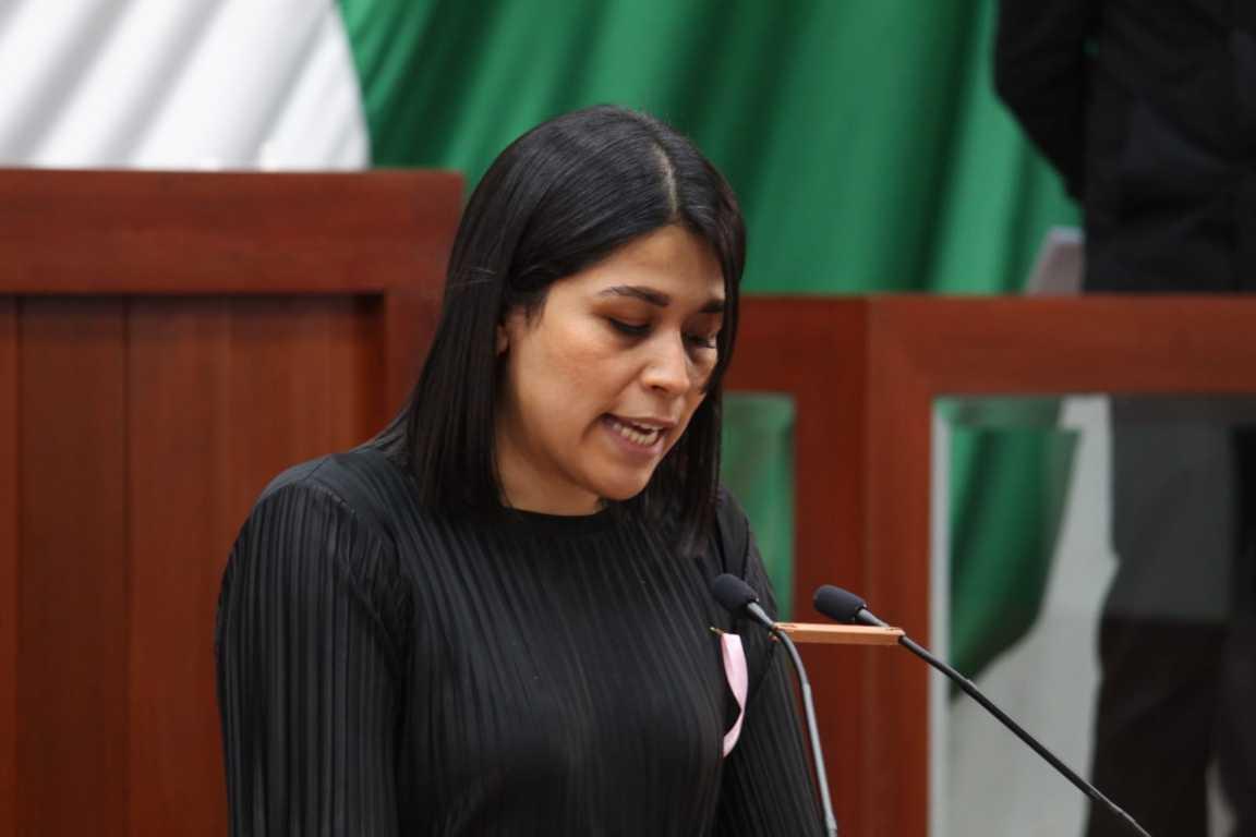 Integrar y organizar debidamente unidad de transparencia del congreso, propone Diana Torrejón