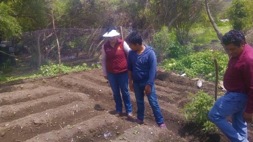 Beneficia DIF estatal a más de 200 familias con huertos familiares de traspatio