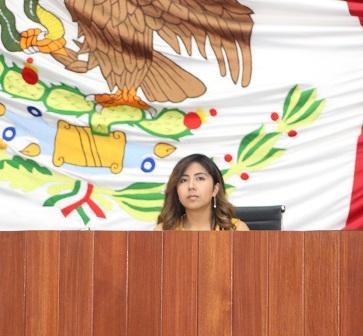Diputada María Félix Pluma busca castigar el acoso sexual