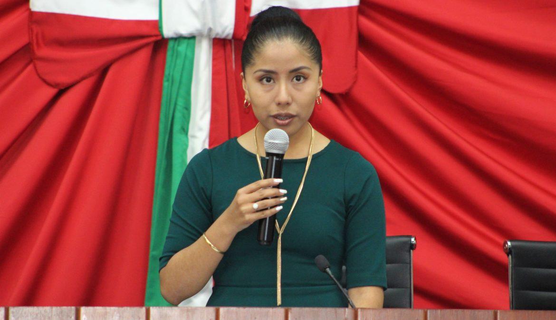Presentará María Félix Pluma informe de actividades legislativas