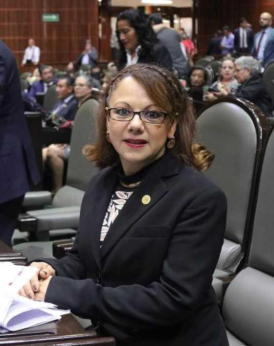 Participa Claudia Pérez en Parlamento Abierto, en materia de derechos sociales