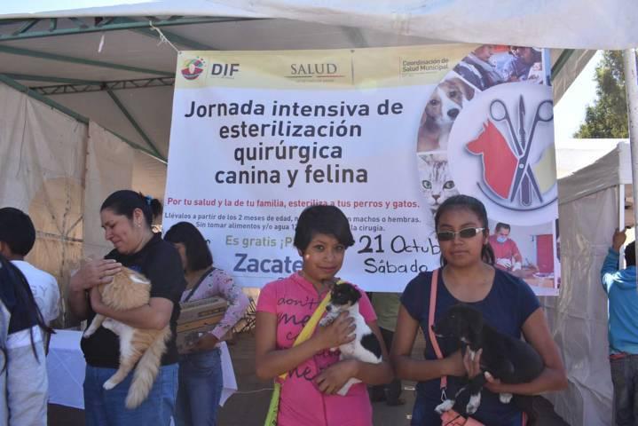 Mejoramos la calidad de vida a màs de 5 mil personas: Orea Díaz